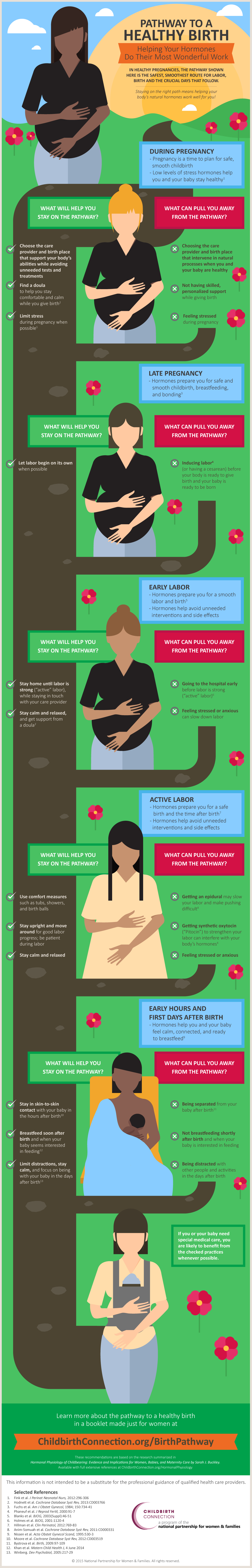 HPoC Pathway to a Health Birth Infographic